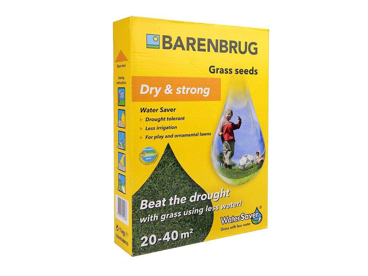 Seme per prato a basso consumo idrico Dry and Strong - Barenbrug
